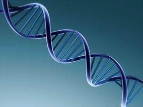 DNS/RNS tisztítás