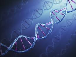 DNA_RNA_isolation